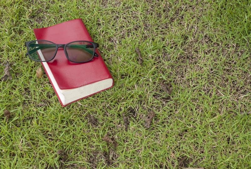 glazen met rood boek op het gras in het park royalty-vrije stock fotografie