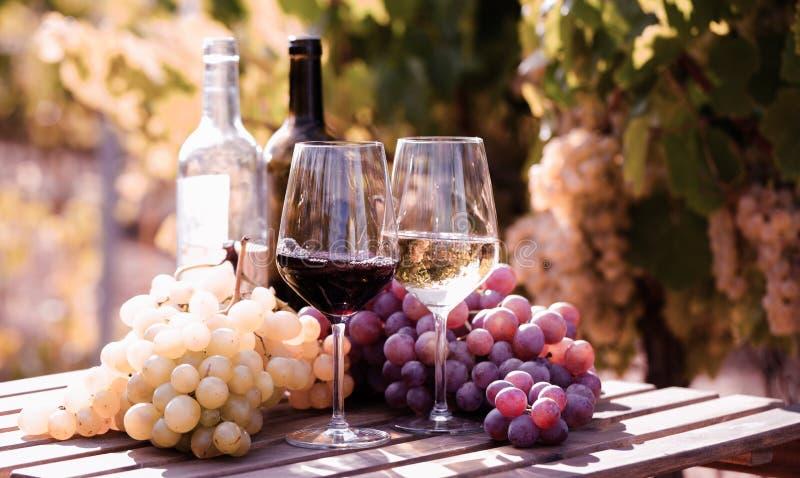 Glazen rode en witte wijn en rijpe druiven op lijst in wijngaard royalty-vrije stock foto