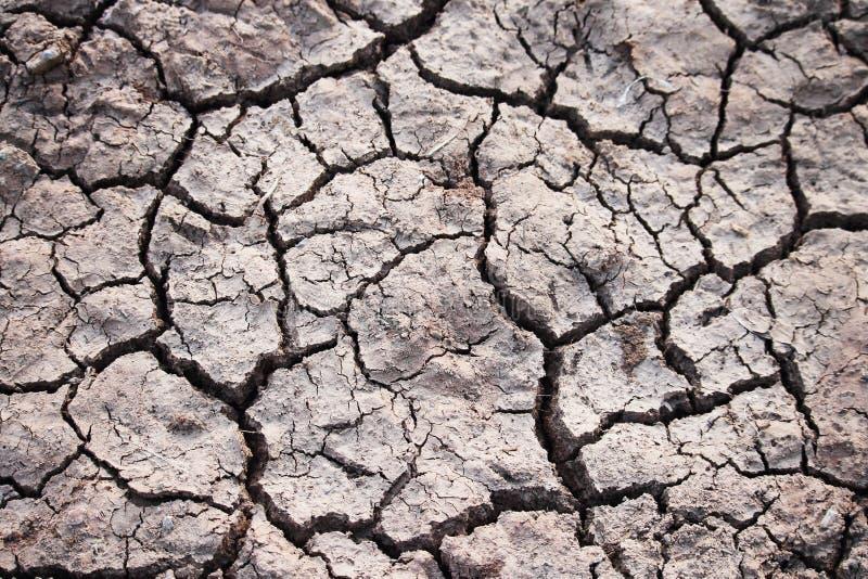 Glebowe tekstury; suchej ziemi tekstura zdjęcie royalty free