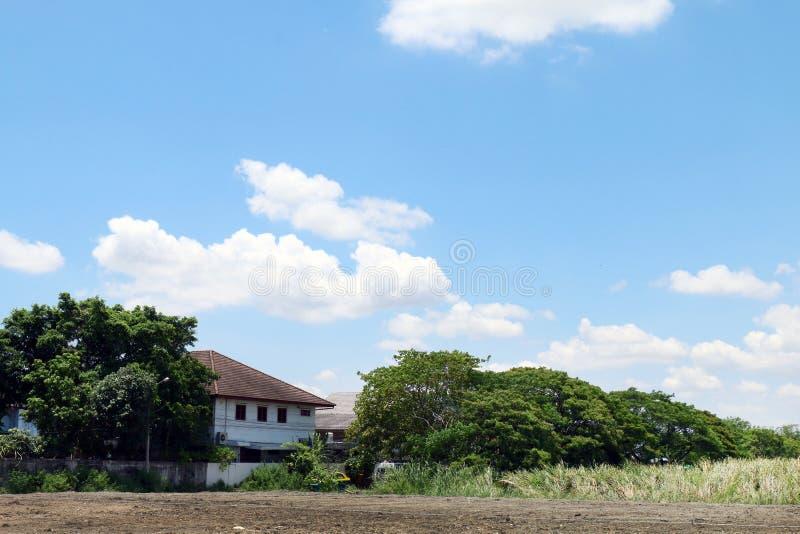 Glebowi teren ziemi przodu domy i drzewa dno obrazek, Krajobrazowa majątkowa wioska na niebieskim niebie zdjęcie royalty free