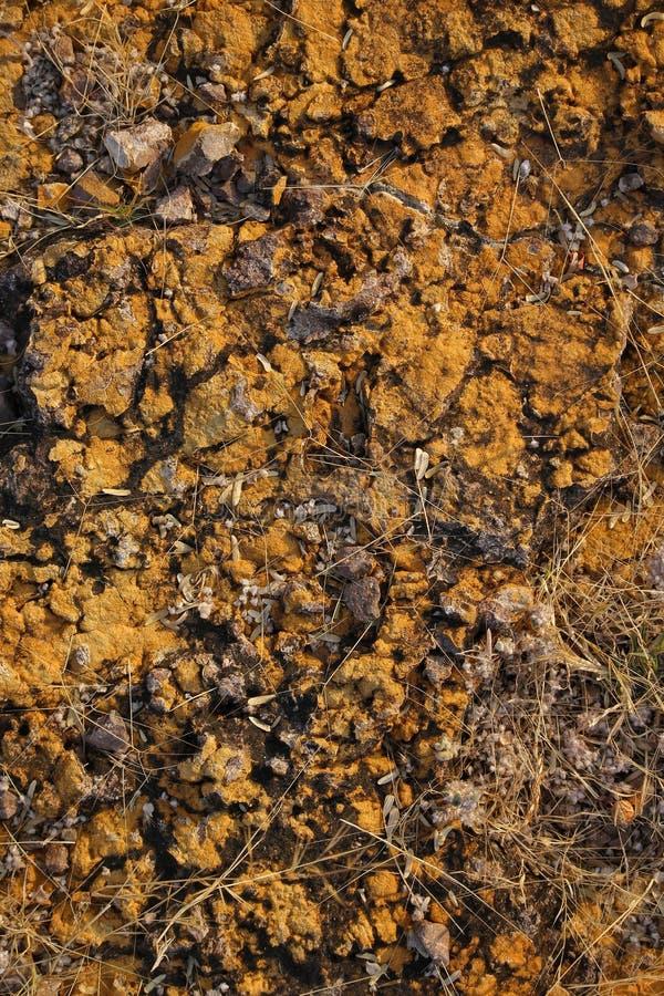 Glebowy tekstury tło obraz stock