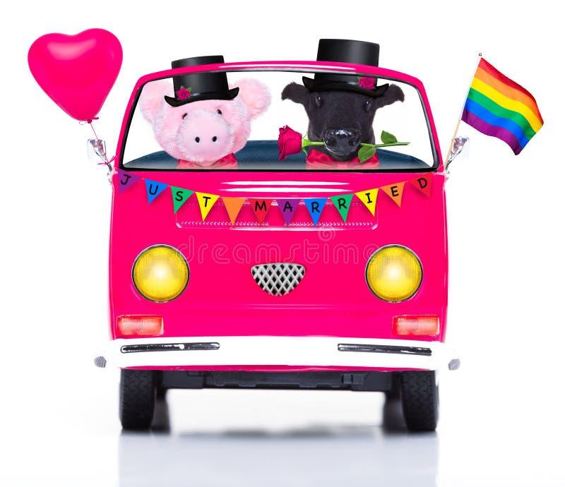 Gleichgeschlechtliche Heirat der Paare des homosexuellen Stolzes lizenzfreies stockfoto