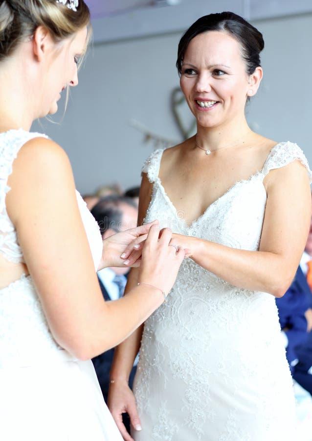Gleichgeschlechtliche Hochzeit lizenzfreie stockfotografie