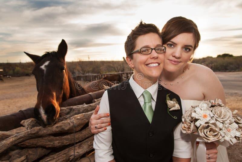 Gleichgeschlechtliche Jungvermählten mit Pferd stockfotografie