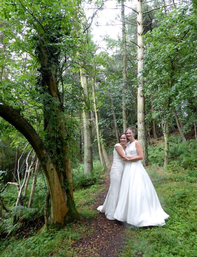 Gleichgeschlechtliche ländliche Hochzeit lizenzfreies stockfoto