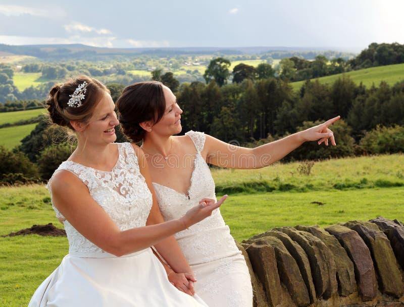 Gleichgeschlechtliche ländliche Hochzeit lizenzfreie stockfotografie