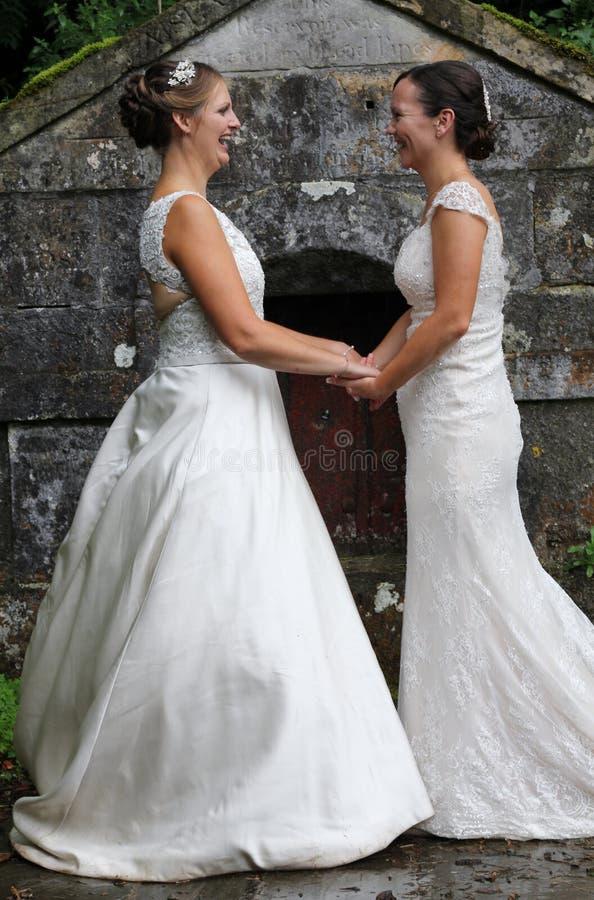 Gleichgeschlechtliche ländliche Hochzeit stockbild