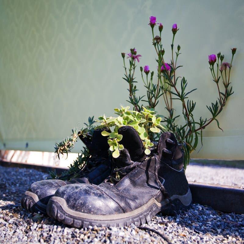 Gleichgewicht der Menschen und der Natur lizenzfreie stockfotografie