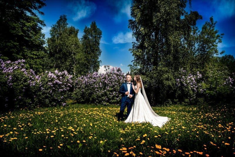 Gleichheit, Krawatte und Kristallschmucksachen Schöne Braut und Bräutigam stockfoto