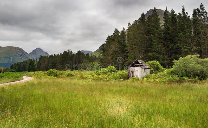 Glen Etive Forest stock image