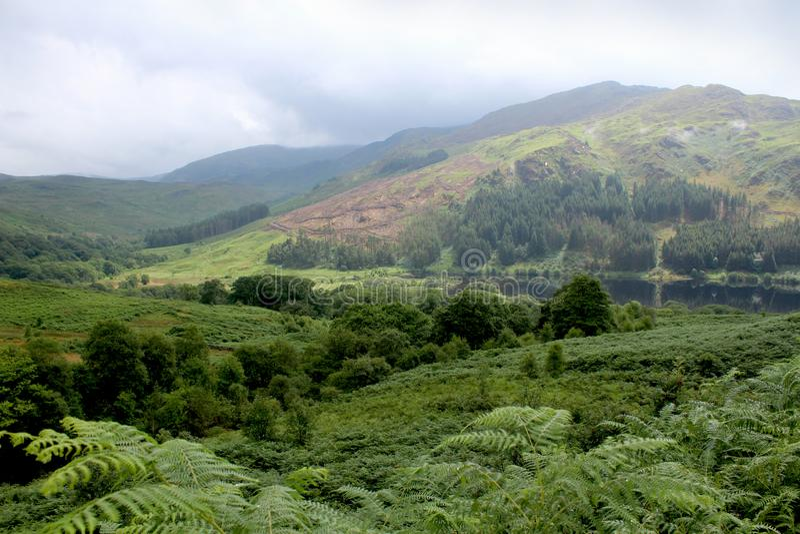 Glen Trool, Galloway Forest Park, Escocia foto de archivo