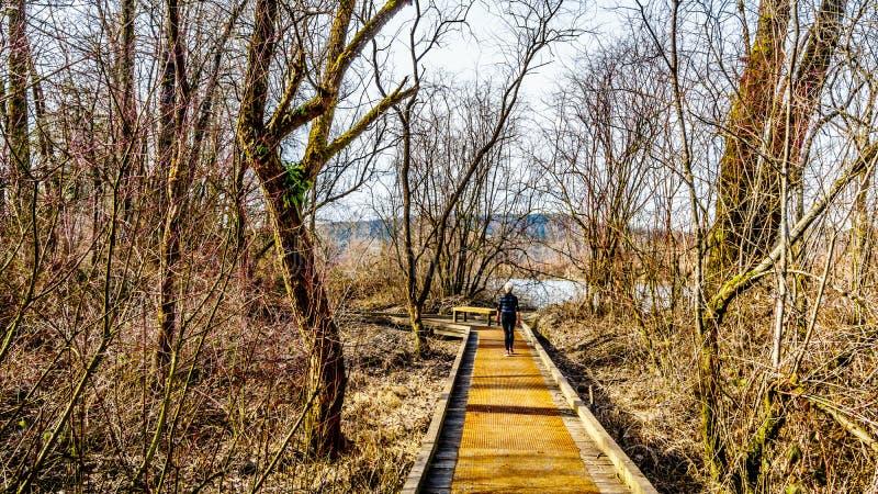Glen Valley Regional Park, fort Langley, la Colombie-Britannique, Canada photographie stock libre de droits