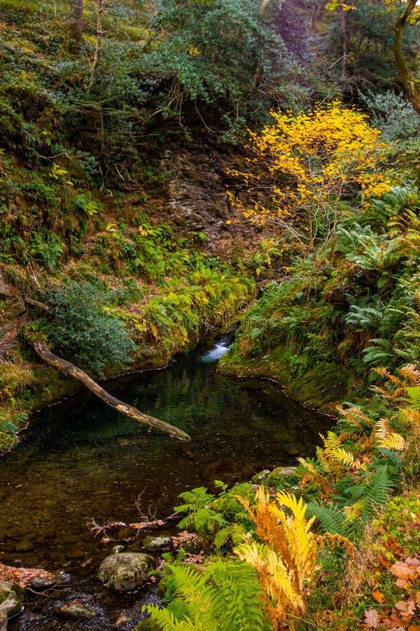 Glenariff è una valle della contea Antrim, Irlanda del Nord immagine stock libera da diritti