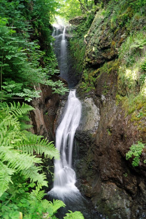 Glenariff Forest Park Waterfall Trail fotografia stock