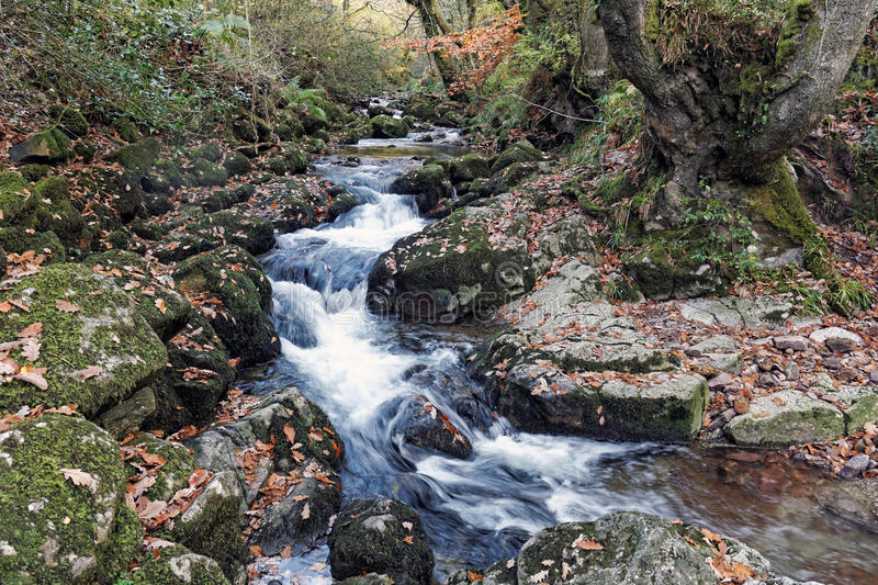 Glenary River cutting through rocks royalty free stock images