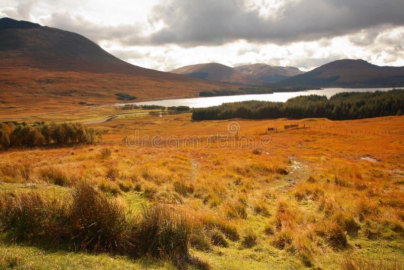 Glencoe, montanhas escocesas, Scotland, Reino Unido imagem de stock royalty free