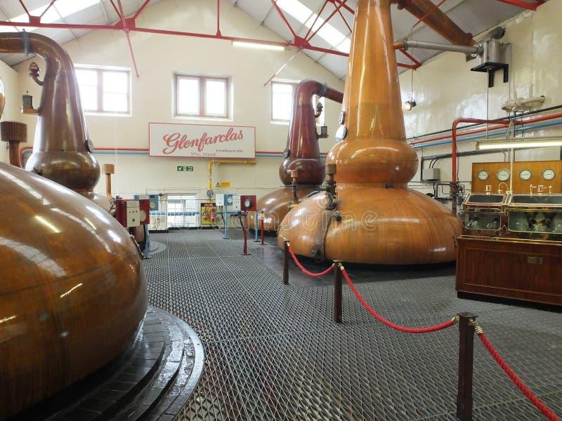 Glenfiddich whisky distillery stills royalty free stock photography