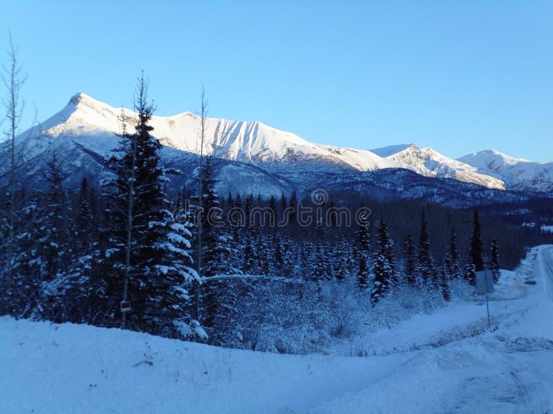 Glenn Highway Alaska lizenzfreies stockbild