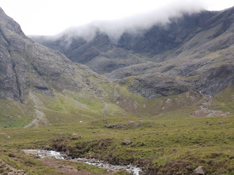 Glenn Mountain och skoggräsplanlandskap royaltyfria bilder