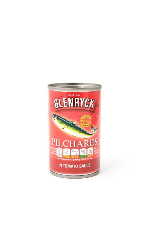 Glenryck konserwował Pilchards obrazy stock