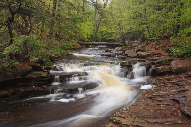 Download Glens Natural Area, Ricketts Glen State Park PA Stock Image - Image: 30998177