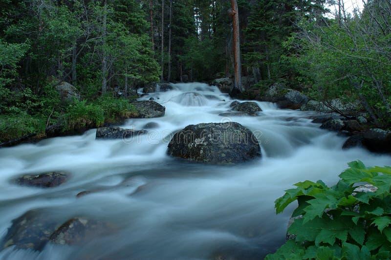Gletscher-Nebenfluss 1 stockfotos