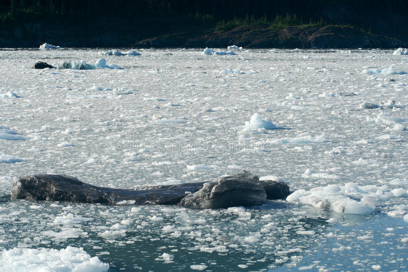 Gletsjer in Alaska stock afbeelding