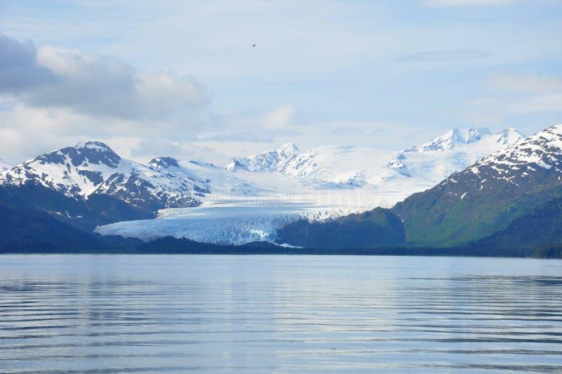 Gletsjer in Alaska die van het overzees achteruitgaan royalty-vrije stock afbeelding