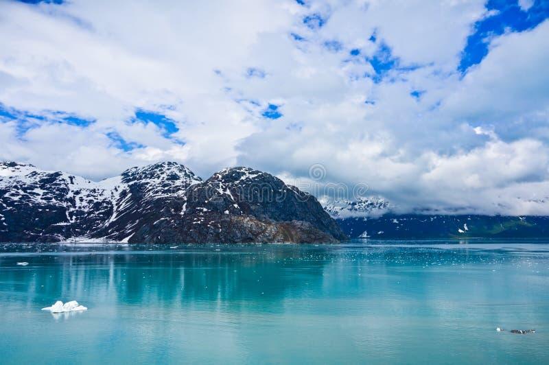 Gletsjerbaai in Alaska, Verenigde Staten stock afbeelding