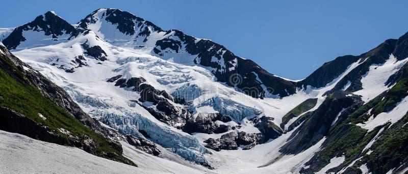 Gletsjermening royalty-vrije stock foto's
