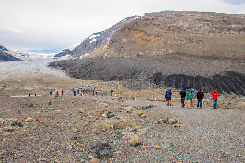 Gletsjerwandelaars Jasper National Park royalty-vrije stock afbeeldingen