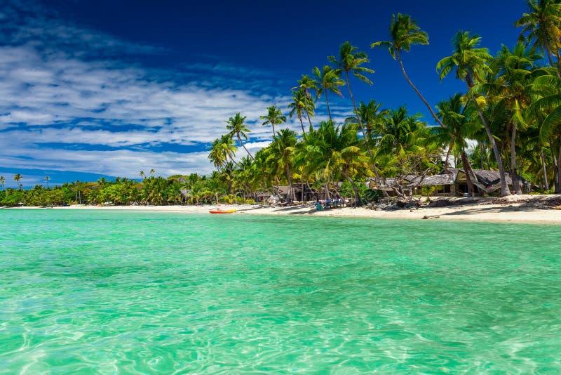 Gli alberi alti del cocco sopra la località di soggiorno di isola tropicale tirano, Figi fotografia stock