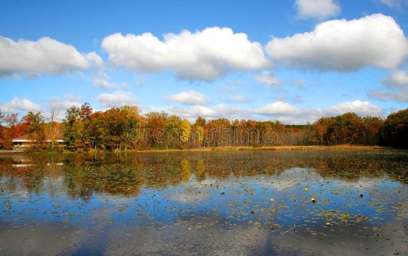 Gli alberi di autunno si avvicinano al lato del lago fotografia stock