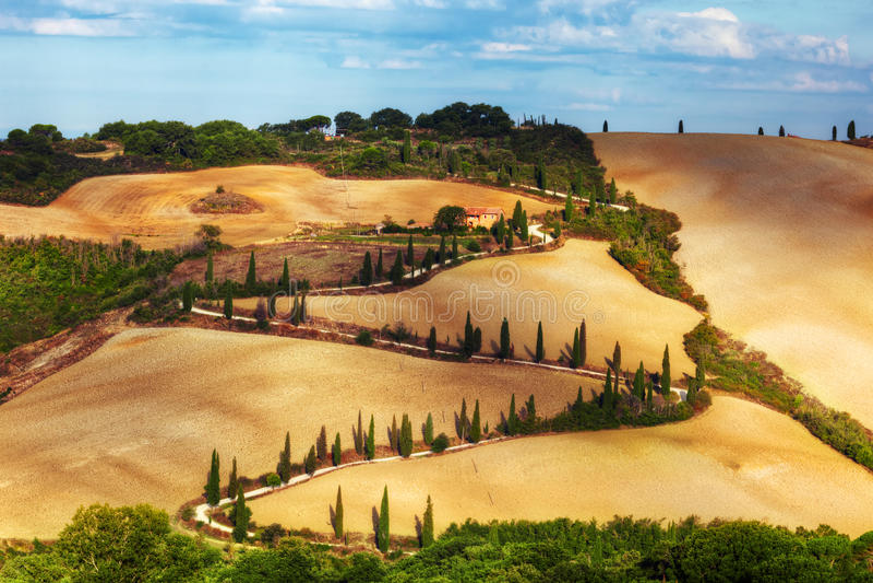 Gli alberi di Cypress serpeggiano strada in Toscana, Italia Paesaggio toscano di stupore immagini stock libere da diritti