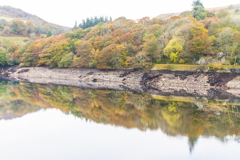 Gli alberi e la collina hanno riflesso in acqua, Autumn Fall fotografia stock