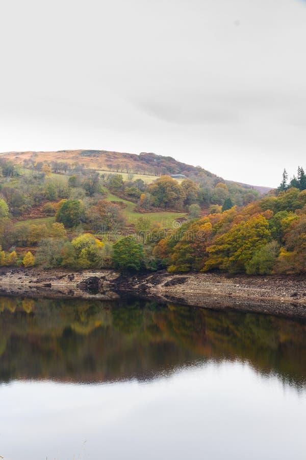 Gli alberi e la collina hanno riflesso in acqua, Autumn Fall immagini stock