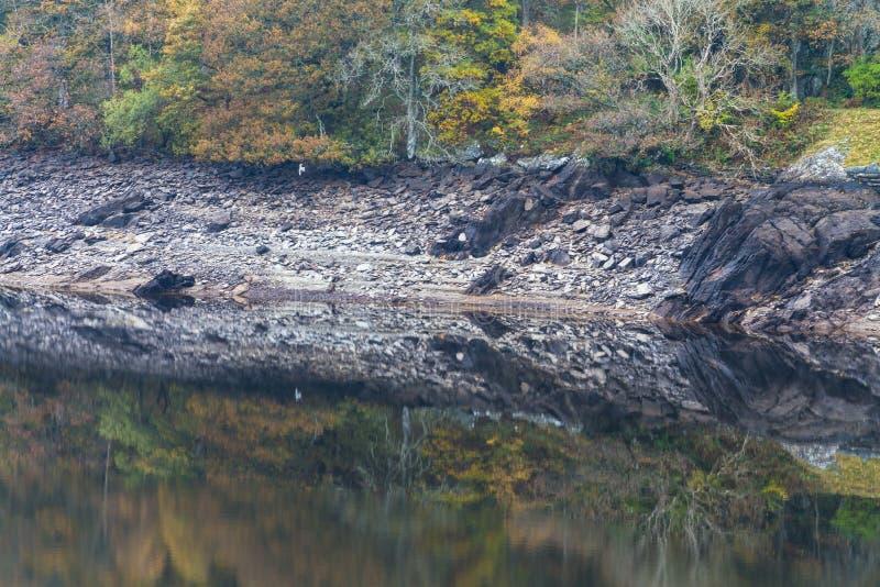 Gli alberi e la collina hanno riflesso in acqua, Autumn Fall fotografie stock libere da diritti