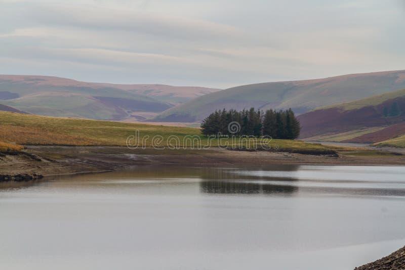 Gli alberi hanno riflesso in Craig Goch Reservoir, sul bordo di mezzo-Wale fotografia stock