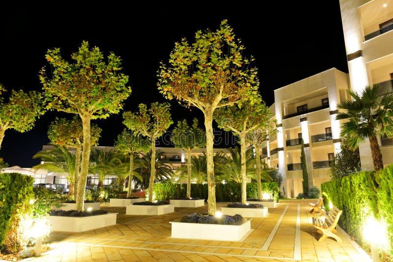 Gli alberi nell'illuminazione di notte all'albergo di lusso immagine stock