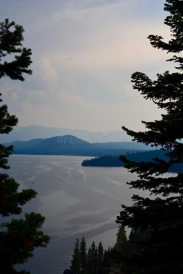 Gli alberi sempreverdi ombreggiati si avvicinano al lago ventoso ed alle montagne blu fotografia stock