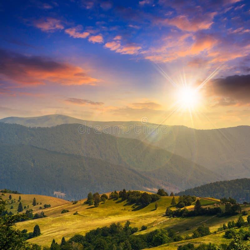 Gli alberi si avvicinano alla valle in montagne sul pendio di collina al tramonto fotografie stock libere da diritti