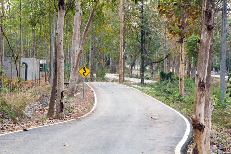 Gli alberi verdi della natura con la strada rurale bike in parco calmo in primavera immagine stock libera da diritti