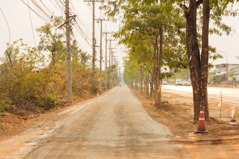 Gli alberi verdi della natura con la strada rurale bike in parco calmo in primavera fotografia stock libera da diritti