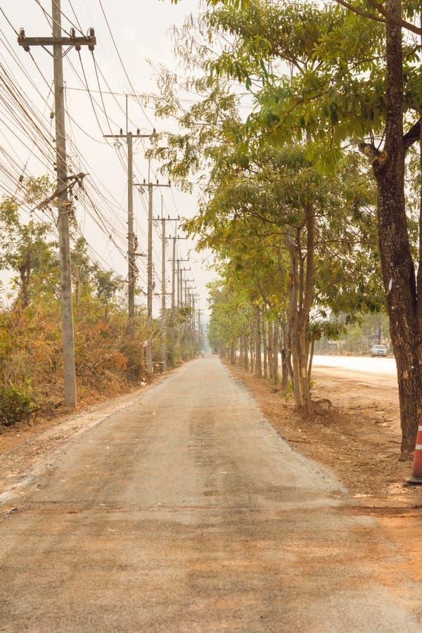 Gli alberi verdi della natura con la strada rurale bike in parco calmo in primavera fotografia stock
