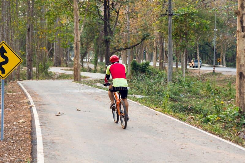 Gli alberi verdi della natura con la strada rurale bike in parco calmo in primavera al tramonto soleggiato Pedone e bicicletta immagini stock