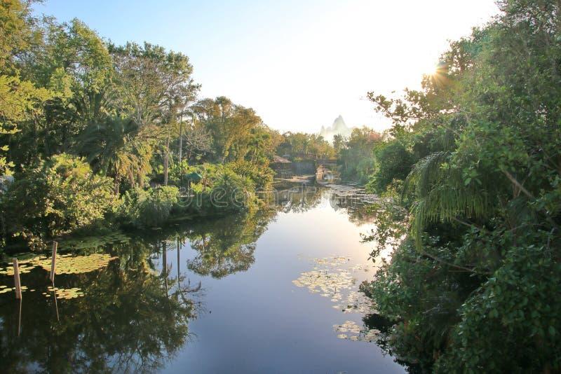 Gli alberi verdi fertili hanno riflesso in acqua perfettamente calma fotografia stock libera da diritti
