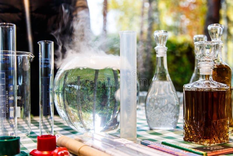 Gli alchimisti della foresta fotografia stock