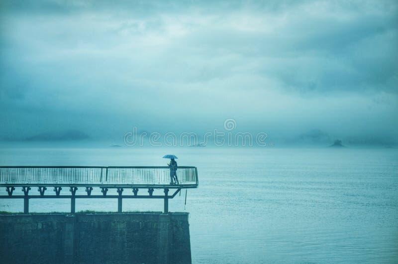 Gli amanti del lago fotografie stock