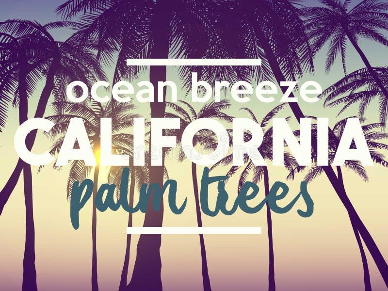 Gli ambiti di provenienza del tumblr della California dell'estate hanno messo con le palme, il cielo ed il tramonto Carta dell'in royalty illustrazione gratis