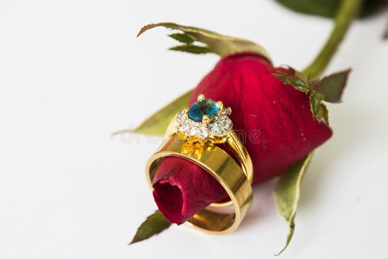 Gli anelli di cerimonia nuziale e sono aumentato immagine stock libera da diritti